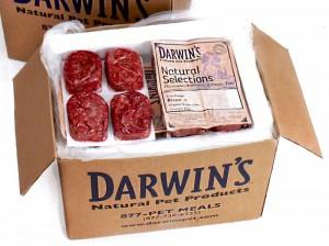 Darwin's Raw Cat Food